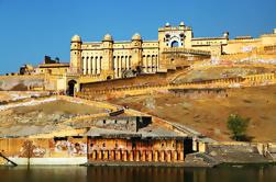 Tour Privado de Trigo de Oro de 6 Días: Delhi, Agra, Jaipur y Mandawa