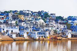 Tour privado de triángulo de oro de 7 días: Delhi, Agra, Jaipur y Pushkar