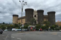 Napoli e Pompei: Full-Day Tour da Roma con pranzo