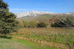 Cotes de Provence Wine Tour desde Aix-en-Provence