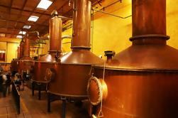 Excursion d'une journée à la Tequila et à la distillerie depuis Guadalajara