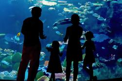 Evite las colas: Inbursa Aquarium Ciudad de México