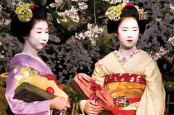 Tour clásico japonés de 14 días: Nikko, Hakone, Takayama, Hiroshima y Kyoto desde Tokio