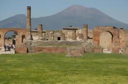Excursión de un día a Pompeya y Monte Vesubio desde Nápoles