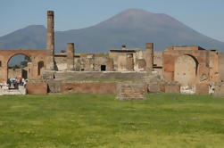 Pompeii and Mount Vesuvius Day Trip from Naples Port