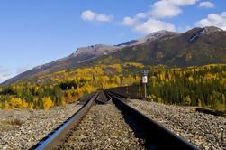 Talkeetna Rafting en Rail Tour van Anchorage
