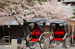 Private Custom Tour: Kioto en un día