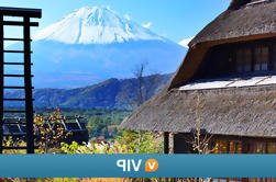 Mt Fuji Tour Privado con Sengen Shrine Visita de Tokio