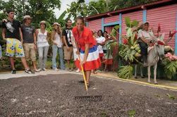 Excursão República Dominicana autêntica de Punta Cana