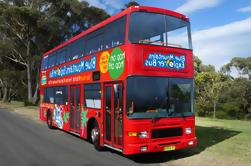 Excursión de ida y vuelta en Blue Mountains con tours panorámicos opcionales y Centro Aborigen de Waradah