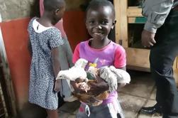 Excursión de medio día en grupo pequeño en Nairobi: Granja a fiesta