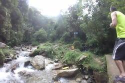 Tour Privado: La Miel Magnífica Reserva Natural Caminata