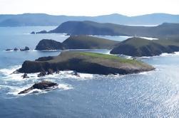 Visita de la isla de Bruny y visita gastronómica desde Hobart