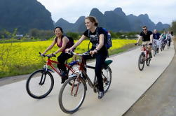 Crucero de un día en el río Li con excursión en bicicleta en Yangshuo