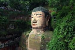 Tour de día: Centro de Investigación de Oso Panda Gigante de Chengdu y Leshan Grand Buddha