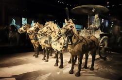 Excursión de medio día al Museo de Guerreros y Caballos de Terracota de Xi'an