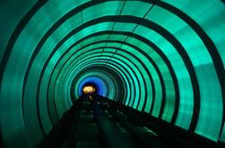 Tour de Ingeniería Urbana de Shanghai: Torre de Jin Mao y túnel de turismo Bund