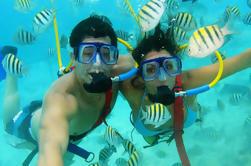 Xel-Ha All-Inclusive Day Trip de Cancun