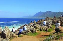 Excursión guiada de 6 días por el Jardín de Ciudad del Cabo