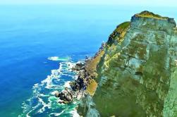 Excursión de medio día a Cape Point desde Ciudad del Cabo