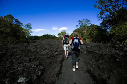 Rangitoto Island Tour desde Auckland