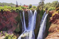 Excursión de un día a Ouzoud Falls desde Marrakech