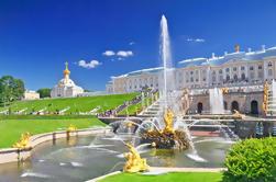 Excursão de costa de St Petersburg: Pouco-Grupo Pushkin, Peterhof e excursão da estação de metro