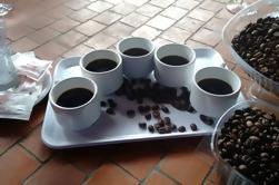 Gran Cañería del Norte con Degustación de Café y Vino