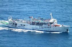 Crucero por el Día de la Costa de Amalfi: Sorrento a Positano o Amalfi