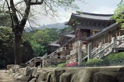 Venta de 2 días Tour de Patrimonio de Gyeongju desde Seúl