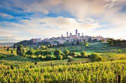 Excursão de degustação de vinhos de Siena, San Gimignano, Monteriggioni e Chianti de Florença
