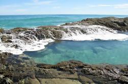 Excursión de 5 días a Fraser Island y la Gran Barrera de Coral