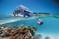 Excursión de tres días al sur de la Gran Barrera de Coral incluyendo la isla Lady Musgrave