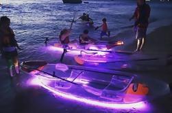 Excursión de 2 días a la isla de Moreton desde Brisbane o Gold Coast con kayak nocturno opcional