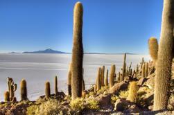 Uyuni Salt Flats Excursión de un día desde La Paz