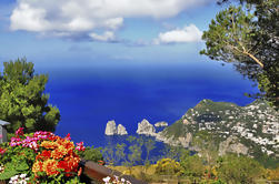 Crucero por el día de Capri desde Sorrento