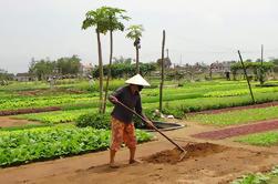 Experiencia agrícola de medio día en Hoi An