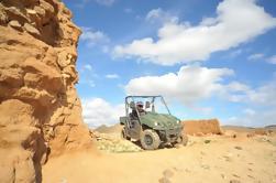 Desierto de Marrakech y Palm Grove Buggy Tour