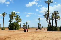 Camel y Quad en bicicleta desde Marrakech