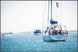 Crucero privado de la costa de oro con almuerzo opcional de mariscos