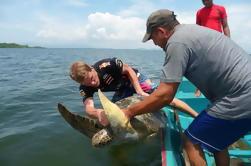 Jiquilisco Bay Biosphere Reserve Turtle Rodeo Capture Tour