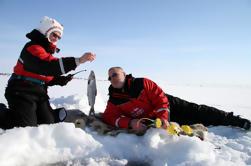 Experiencia en pesca en Laponia desde Rovaniemi