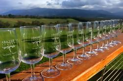 Boutique Yarra Valley Winery y Chocolatarie Tour con Eureka Skydeck y Edge Experience Admisión desde Melbourne