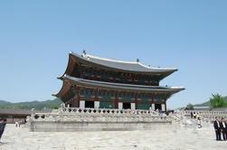 Tour por la mañana del Palacio de Seúl
