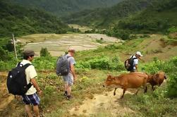 Reserva Natural de Pu Luong de 3 Días y Casa de Familia