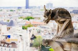 Skip the Line: Visita guiada a las torres de la catedral de Notre Dame
