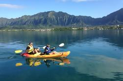 Kaneohe Bay Kayak y Snorkel Tour a Coconut Island
