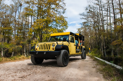 Tour privado: Everglades Sightseeing en Big Cypress National Preserve
