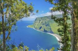 Excursión privada: Hawaii Island Adventure