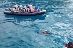 Na Pali Costa Snorkel y Rafting Aventura